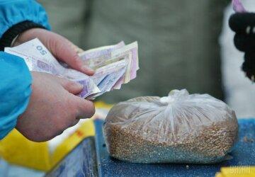 выборы подкуп гречка