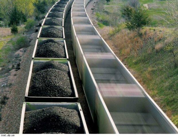 В Минэнерго рассказали, как заменить антрацитовый уголь из РФ