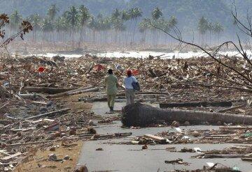 цунами, землетрясение