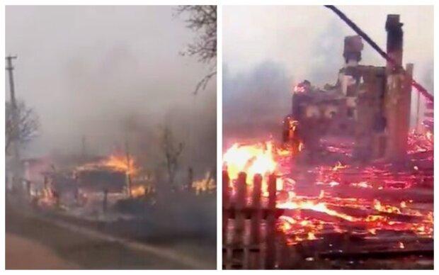 Леса и жилые дома уничтожены, пожары в Украине не утихают: новые кадры из эпицентра бедствия