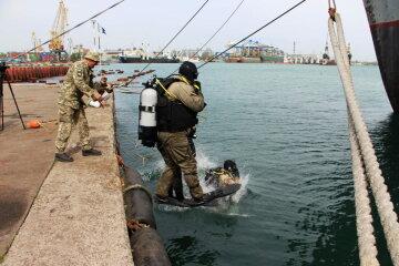 В одеському порту спецназ кинувся на пошуки вибухівки: кадри з місця
