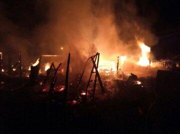 Потужні пожежі спалахнули на Одещині, є жертви: кадри Вогняної НП