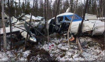 Летіла до бабусі: кадри з місця авіакатастрофи в РФ та історія єдиної вцілілої