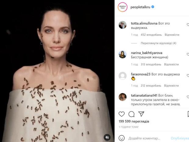 Анджелина Джоли оказалась в центре роя пчел, кадры впечатляют: «Бесстрашная женщина»
