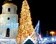 новый год елка софиевская площадь киев