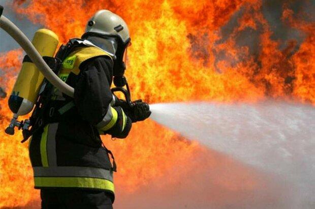 Столб дыма был виден за километры: на популярном украинском курорте разгорелся крупный пожар, кадры с места событий