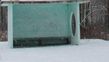 """""""Висадила і поїхала"""": вихователі залишили 5-річну дівчинку одну замерзати на зупинці"""