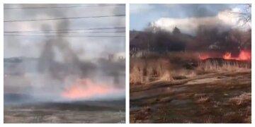 Під Харковом масштабна пожежа підібралася до житлових будинків: область оповита чорним димом, кадри