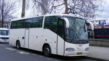Американець сп'яну купив автобус (фото)