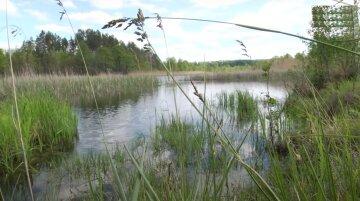природно-заповідний фонд України, природа, посадка, Річка, скрін