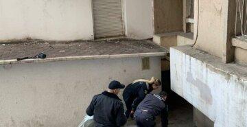 Бездыханное тело 15-летней школьницы нашли под окнами дома: трагические подробности  и кадры