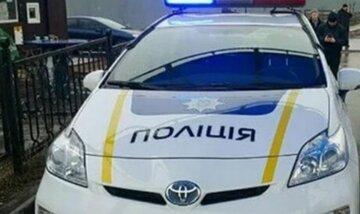 """Полицейские бросили авто на тротуаре, киевляне возмущены: """"В новом году паркуются не хуже..."""""""