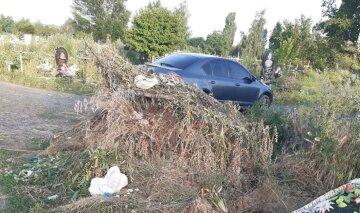 """""""Печально и горько"""": харьковчане жалуются на горы мусора на погостах, фото"""