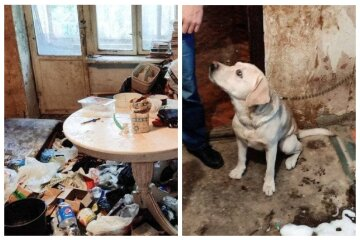 Многодетная одесситка превратила квартиру в мусорник, фото: 9-летнего Давида пришлось забрать