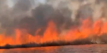 Масштабна пожежа розгорілася під Києвом, небо застелив чорний дим: кадри вогняної НП