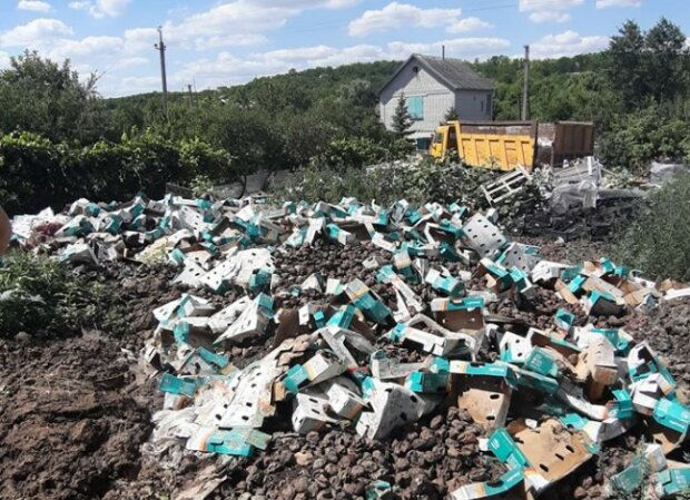 """Житель Дніпра загадил вулицю тоннами сміття, фото: """"Страшенний сморід"""""""