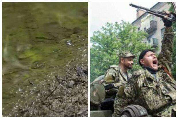 """Донбасс сотрясло экологическое бедствие из-за боевиков: """"стали стремительно..."""""""