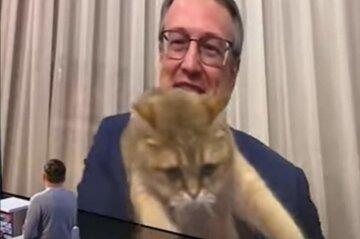 Кіт Геращенка увірвався в прямий ефір і перервав виступ заступника міністра: відео курйозу