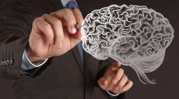 мозг наука