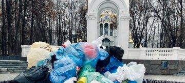"""""""Не бросай меня"""": людей """"придавило"""" мусором в центре Харькова, фото"""
