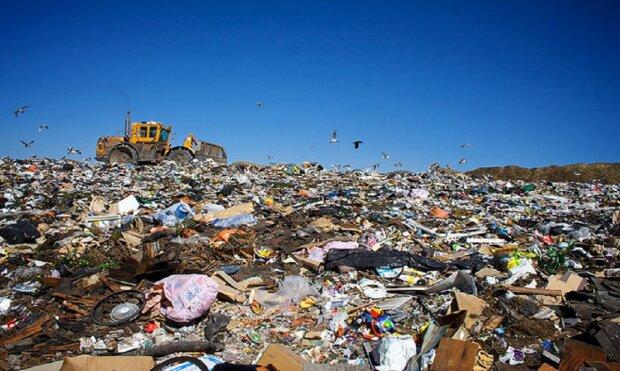 """Тонни сміття біля річки Дунай: одеситам показали, що відбувається на в'їзді в """"українську Венецію"""", відео"""