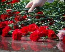 гвоздики, поминовение, память, солдаты, бойцы