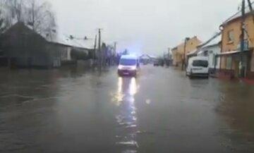 Непогода наделала беды на Закарпатье, дороги превратились в реки: кадры бедствия