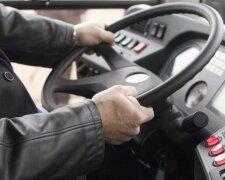 водитель, руль, маршрутка, транспорт