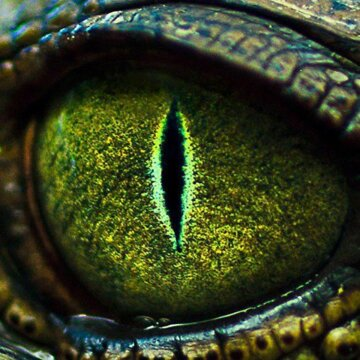 монстр, рептилия, змея, питон, чудище, чудовище, глаз