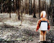 мальчик лес ребенок