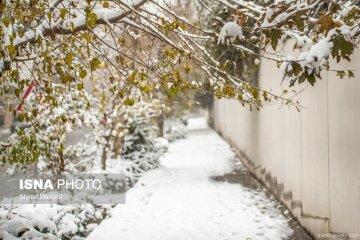 зима тегеран7