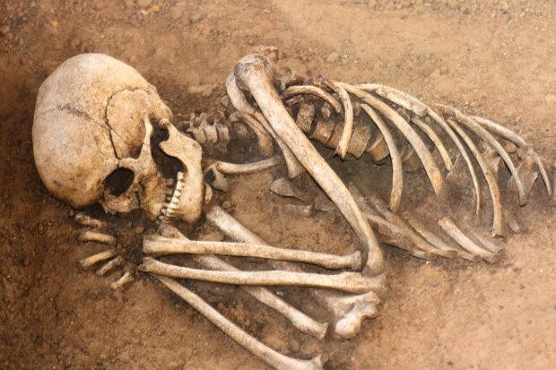 Кости-человек
