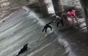 Почала відносити течія: велосипедист впав з дамби в Харкові, момент потрапив на відео