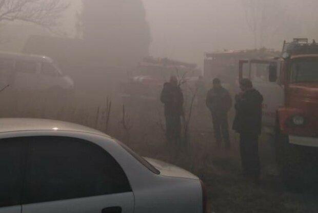 Масштабный пожар уничтожил гектары леса в Чернобыле, задействована авиация: кадры последствий
