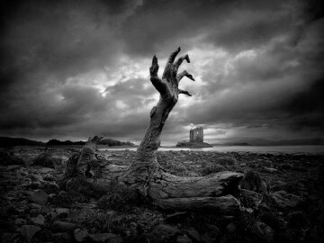 природа, экология, ужас