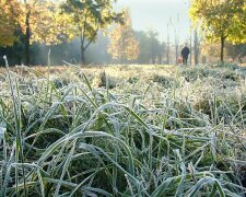 холод1