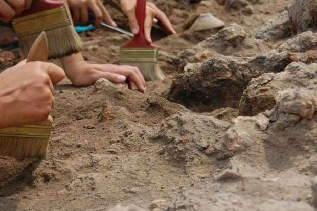 археологи, раскопки