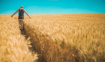 """Украинцы высмеяли ситуацию с рынком земли: """"Просто они всех на..."""""""