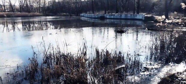 В Киеве знаменитое озеро превратилось в лужу отходов: пугающие кадры
