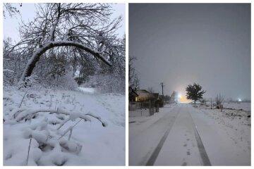Настоящая зима: в сети показали яркие кадры, как Одесскую область замело снегом