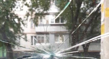 На автомобілі харків'ян влаштували атаку глодом: кадри наслідків