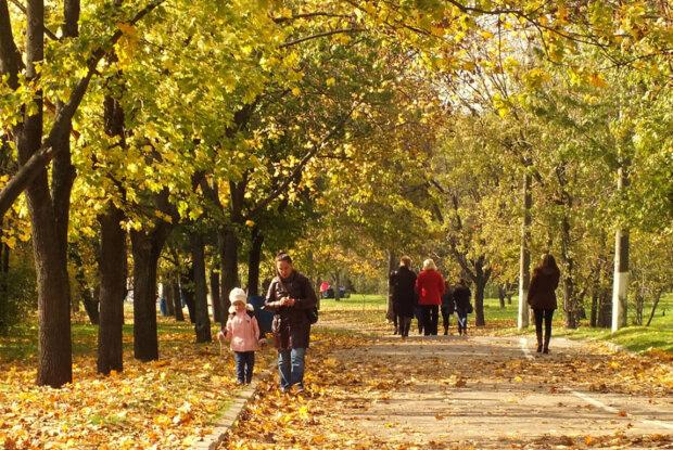 осень, люди, погода