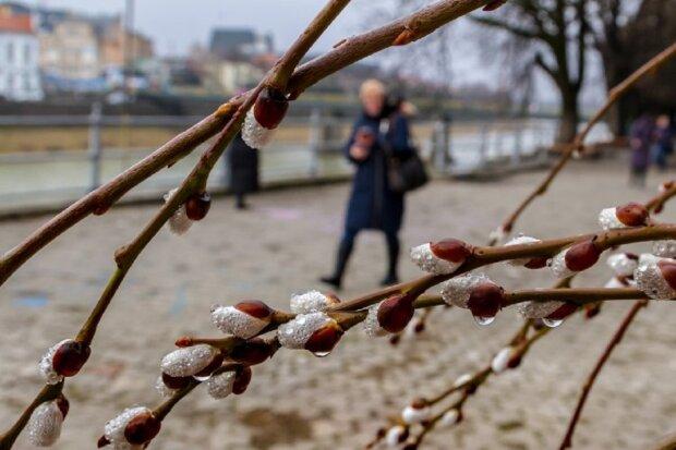 Погода в Одессе снова удивит: что будет 18 февраля