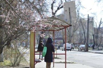 весна в Киеве, погода в Киеве