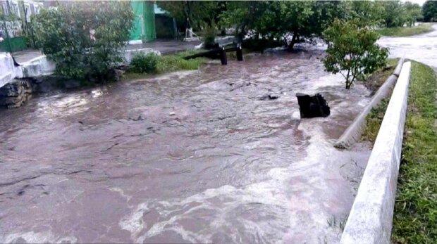 """""""Потоки воды хлынули с горы"""": в сети показали, как затопило Одесскую область, видео"""