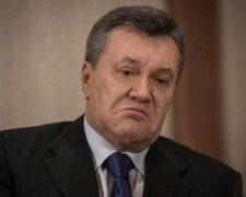 Янукович, Виктор Янукович