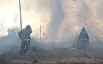 Вогонь охопив гектари територій в Одесі, рятувальники зробили все можливе: відео НП