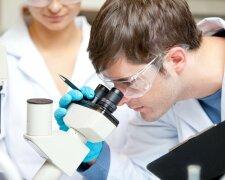 наука, лаборатория, ученые