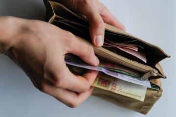деньги, гривны, кошелек