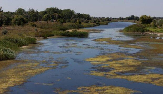 Чистейшая река Европы на грани исчезновения: днепряне приложили руку, печальные кадры